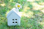 家の置物と1輪の花